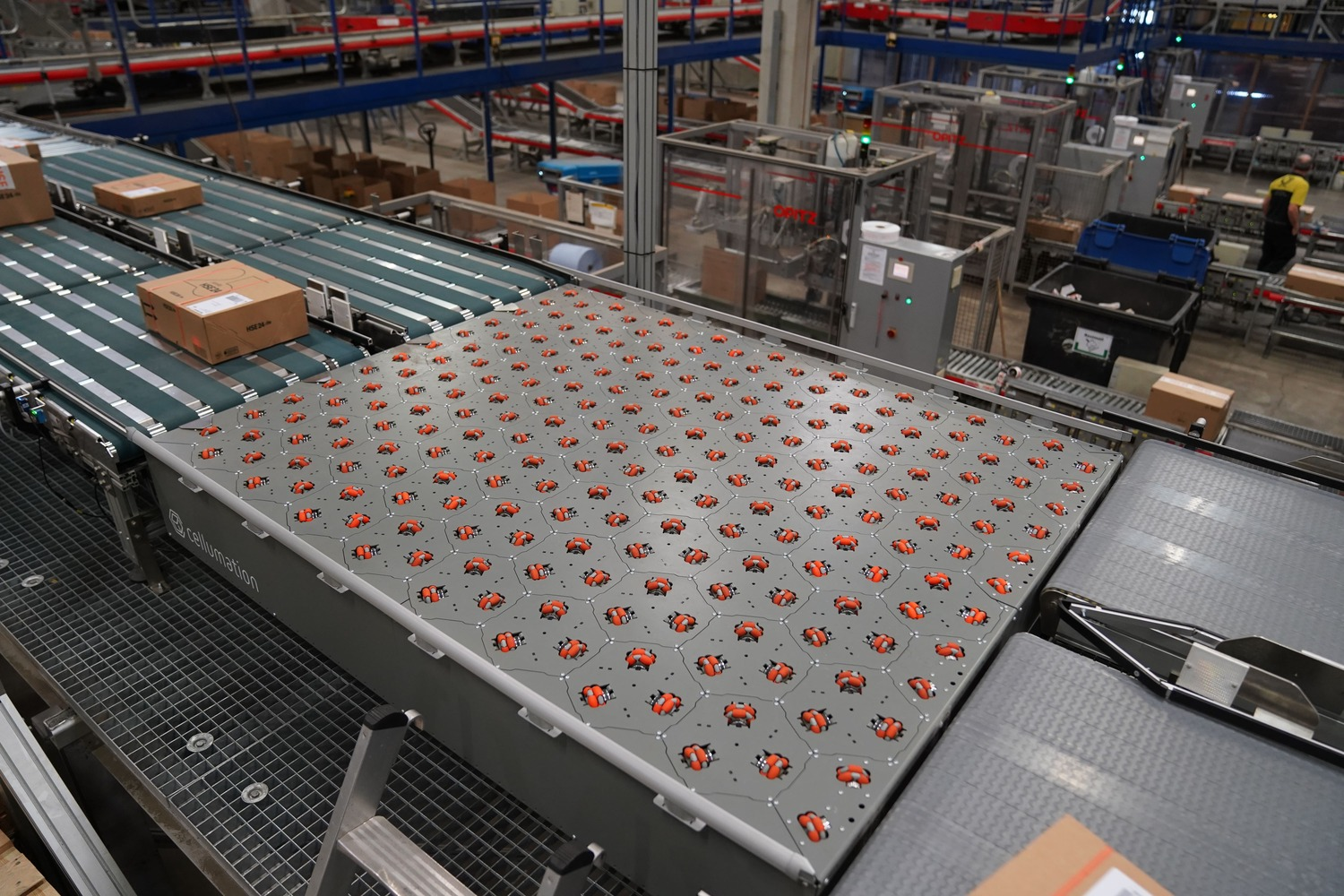 celluveyor Sorting Machine two Inputs two Outputs